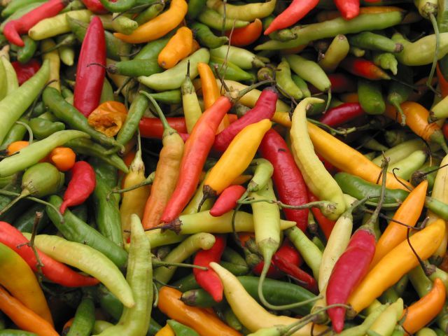 chilipepperdetail.jpg